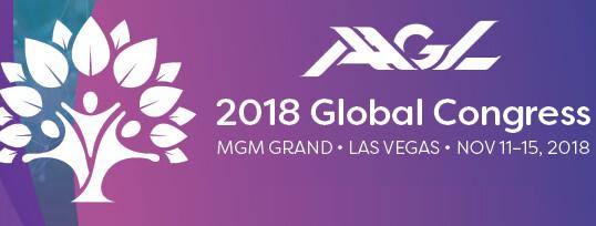 47th Annual Global Congress on Minimally Invasive Gynecologic Surgery
